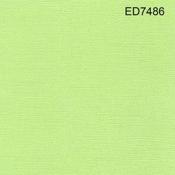 Cardstock green lime 12X12 (lot 20)