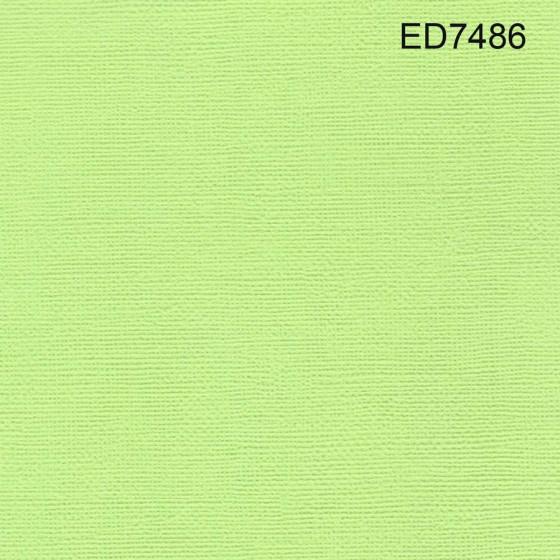 Cardstock vert lime 12X12 (lot 20)